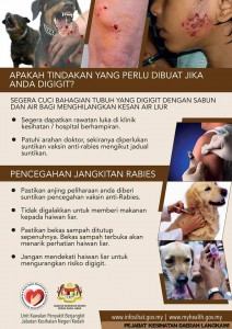 rabies_information2